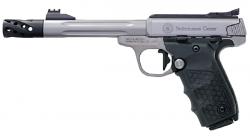 S&W SW22 VICTORY PC TGT SS AS