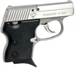 NAA GRDN 32ACP 6RD Stainless with INTGR LCK