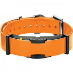Dogtra ARC Add-a-Dog Receiver - Orange