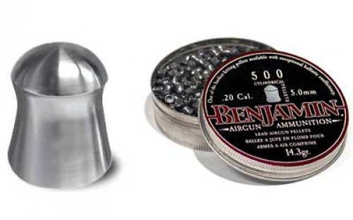 Benjamin 5mm .20-Caliber Pellets - Silver